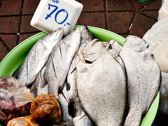 Who Suffers for our Seafood?: The Thai Fishing Industry.